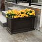 yellow flowers planted in the espresso-colored ferndale rectangular planter box outside.