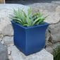 tall, leafy green plant planted inside the bright blue hillsdale square planter on a rock.