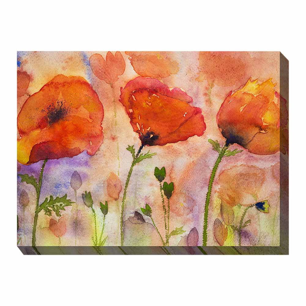 three bold poppies with multi-colored background wrapped canvas print