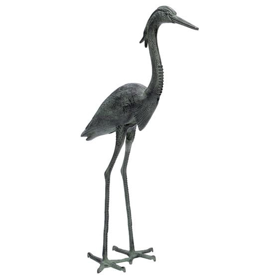 achla great blue heron on white background