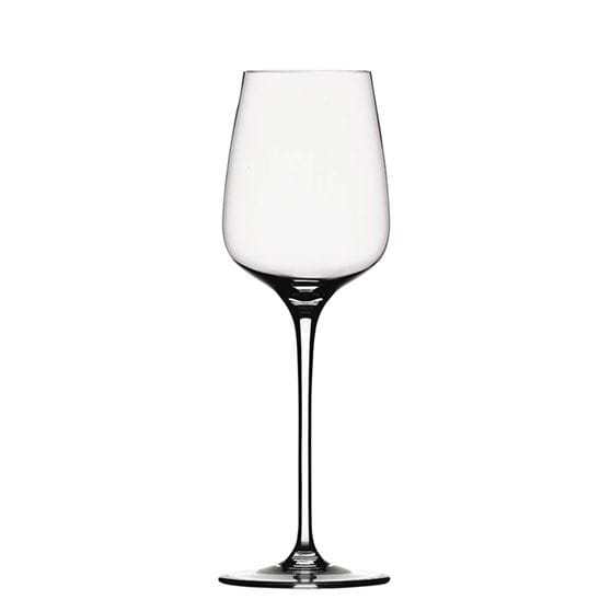 Wine glass with white background